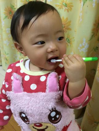 歯磨きしゅこしゅこ?