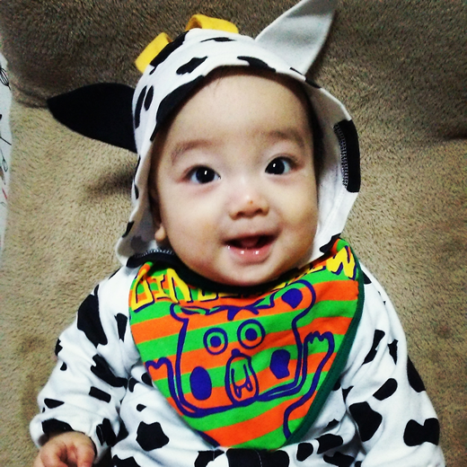 牛さんの赤ちゃん写真