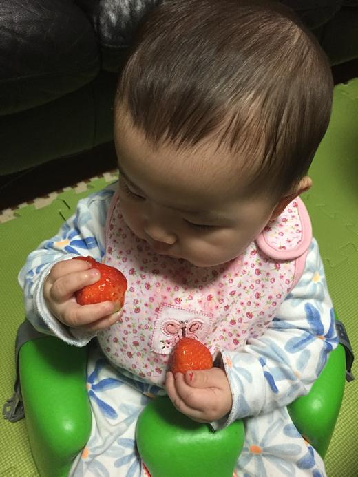 初めてのいちごの赤ちゃん写真