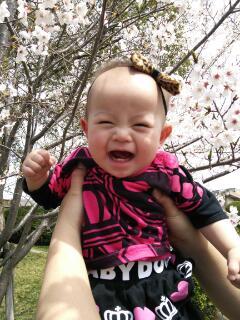 お花見の赤ちゃん写真