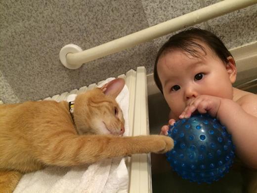 ニャンニャンとお風呂の赤ちゃん写真