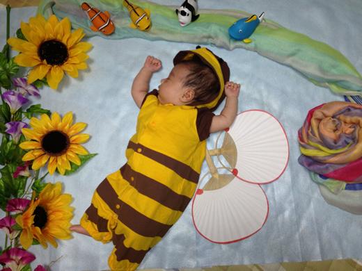 ハチさんのねんねの赤ちゃん写真