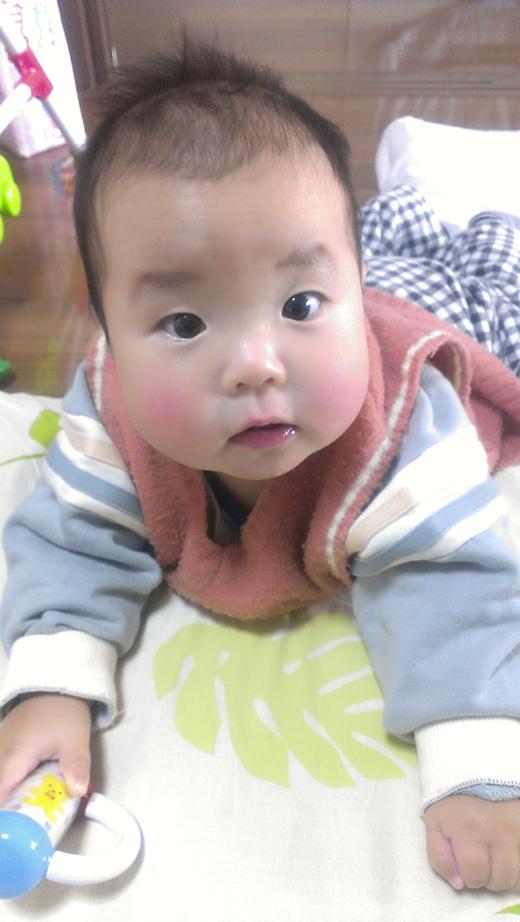 ハイハイ大好き!の赤ちゃん写真
