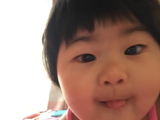 ペロっ♪の赤ちゃん写真