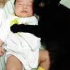 愛猫と寝んね♩