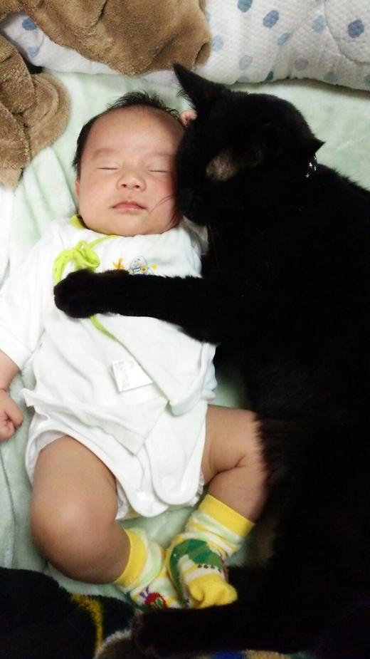 愛猫と寝んね♩の赤ちゃん写真